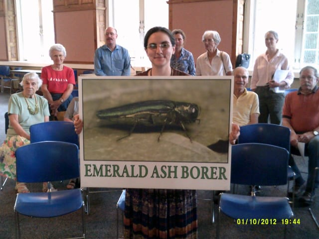 Katherine Dugas, entomologist from the Connecticut Agriculture Experimental Station in New Haven, holds an enlarged image of the emerald ash borer.
