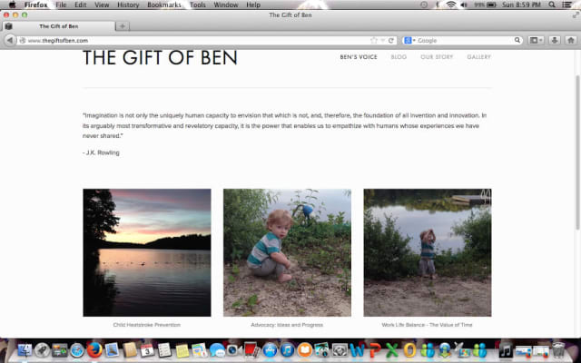 "Lindsey Rogers-Seitz started the website called ""The Gift of Ben"" in memory of her son, who died July 7 after he was left in a hot car by his father, Kyle Seitz, while he was at work."