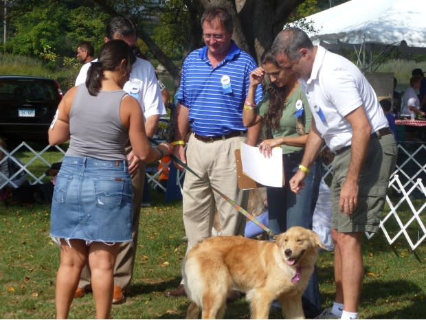 Adopt-A-Dog is looking for more volunteers for the upcoming Puttin' on the Dog Festival.
