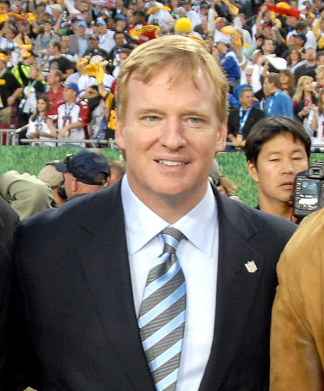 NFL Commissioner Roger Goodell admitted to being too lenient on Ray Rice for his suspension following a domestic incident.