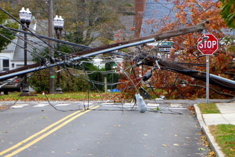 Trees and utility poles down in Stamford.