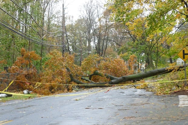 Dozens of roads in Greenburgh remain closed due to downed trees and wires, police said.