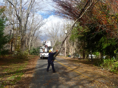 A worker moved a tree blocking access to Ledgewood Drive in Weston.