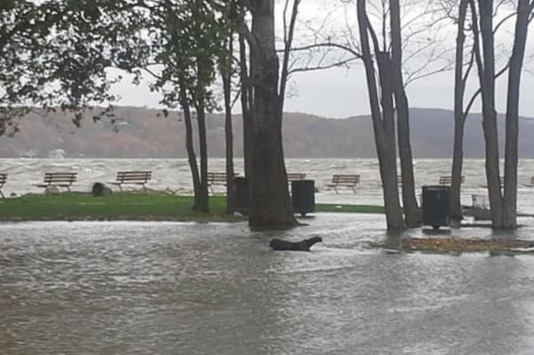 The Hudson floods MacEachron Waterfront Park in Hastings after Hurricane Sandy.