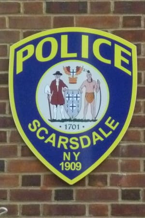 Scarsdale police were busy in the week following Hurricane Sandy.