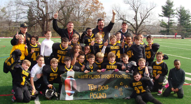 The 2012 White Plains Bernies fifth- and sixth-grade team won the Westchester Youth Football League title.