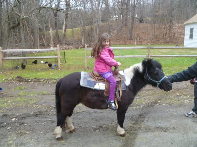 Alexandra Spencer rode a Runabout Farms pony at the Weston Winter Farmers Market on Saturday.