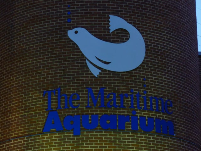 "The Maritime Aquarium in Norwalk will offer free admission to children aged 12 and younger Dec. 22, the day after the ""Mayan apocalypse."""