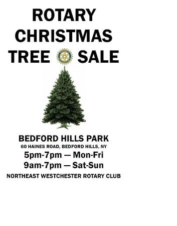 The Northeast Westchester Rotary Club's Christmas tree sale in Bedford Hills featuring fresh cut Douglas and Fraser Firs continues until Dec. 24.