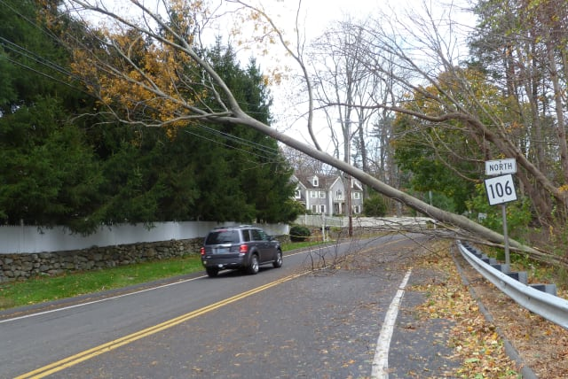 Thousands of New Canaan residents were without power for more than a week after Hurricane Sandy knocked down trees and power lines, making roads dangerous and tough to pass.