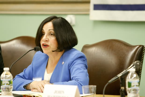 State Sen. Toni Boucher won a third term in the 26th district in the November elections.