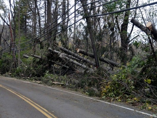 Route 22 felt the effects of Hurricane Sandy as fallen trees and power lines contributed to more than 1,800 Armonk homes losing electricity.