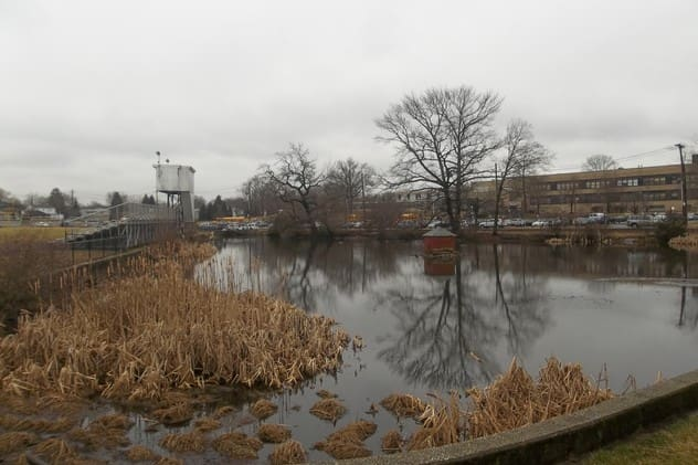 The Town of Harrison plans to build three dams to remediate flooding by the duck pond at Nelson and Union avenues.