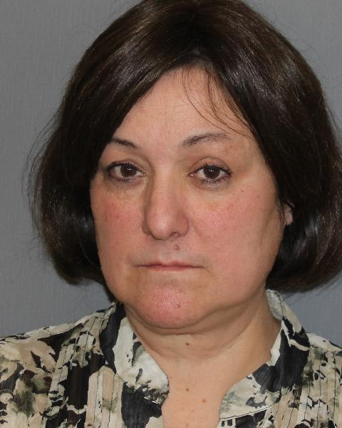 Janet Protano, 53, of Yorktown Heights, was charged with felony DWI because of a previous conviction and felony aggravated DWI on Route 6 in Cortlandt.