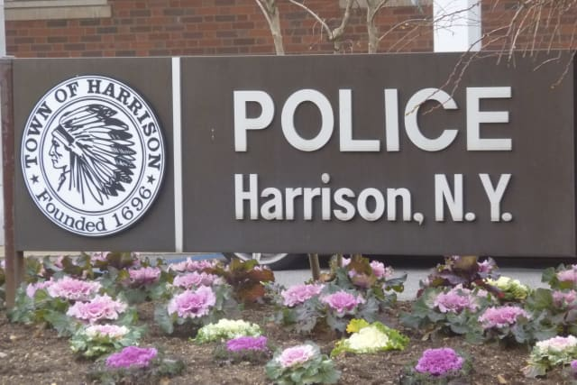 Crime decreased in Harrison from 2010 to 2011.