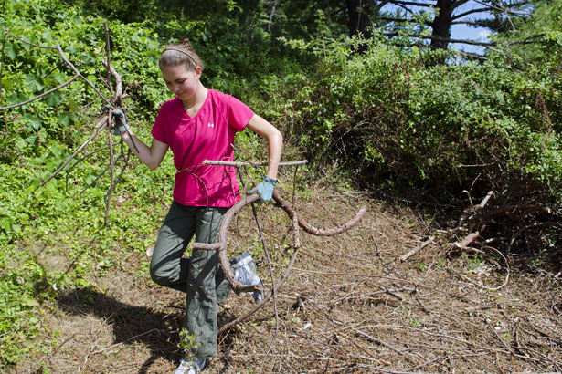 Shannon Longworth will speak on her Memory Forest Project at Sunday's Somers Land Trust meeting.