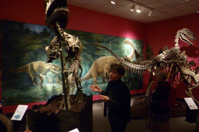 Bruce Museum Curator of Science, Gina Gould, talks about the dinosaurs on display in the new exhibit at the Greenwich museum.