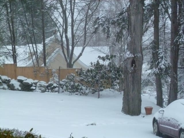 Winter Storm Nemo is bearing down on Mount Kisco.