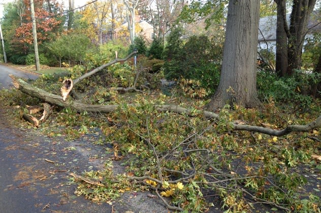The devastation of Hurricane Sandy forced schools to open for parts of winter break in Tuckahoe and Eastchester.