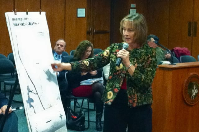 Greenwich Community Garden Vice Chairwoman Terry Browne Kutzen explains the plans for a community garden on Bible Street to the Board of Selectman at Thursday's meeting.