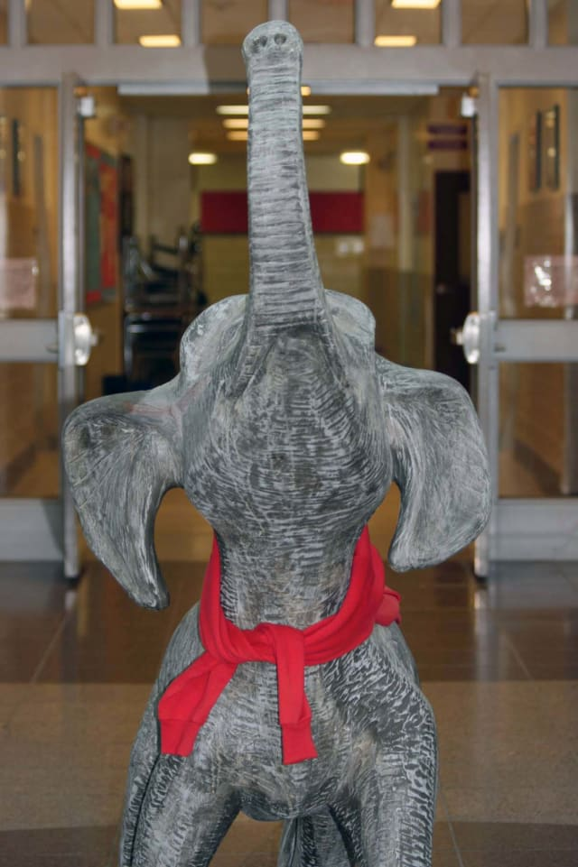 Somers' Elephant is in the running for best mascot.