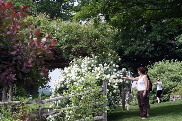 North Salem's Duck Hill is among the gardens open during The Garden Conservancy's Open Days Program.