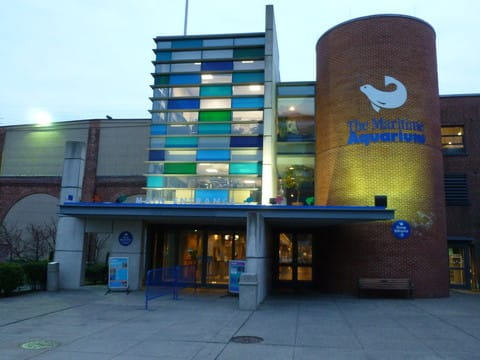 Cleaning employees who lost their jobs late last year will return to work at Norwalk's Maritime Aquarium soon.