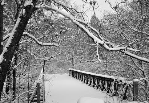 Fairfield County could be a winter wonderland again as a big snowstorm approaches late Sunday.