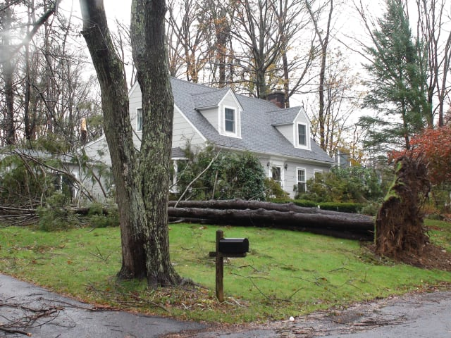 Strong, gusty winds could blow down tree or branches on Wednesday across Fairfield County.