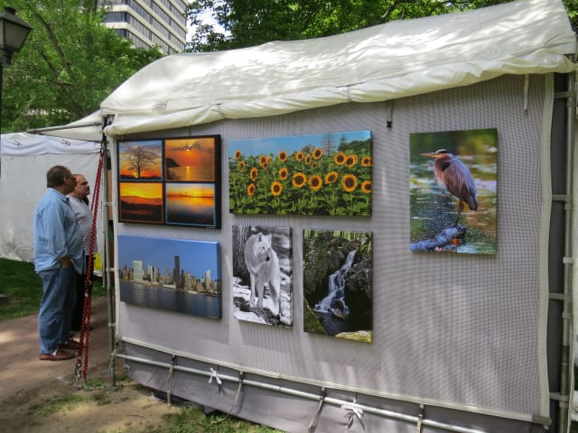 Tibbets Park in White Plains was abuzz with artists  this weekend.