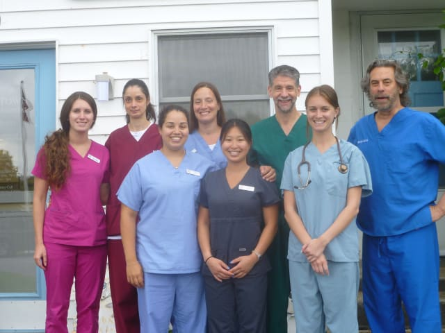 The staff at Yorktown Animal Hospital.