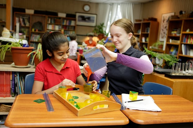 "Hudson Country Montessori Schools develop ""can do"" children."
