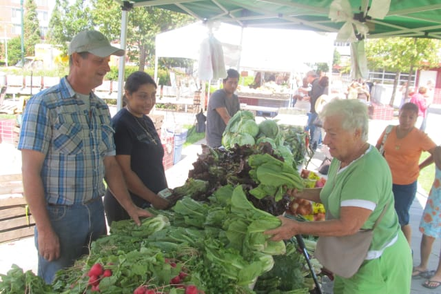 The New Rochelle farmers market continues Friday on the New Rochelle Public Library green.