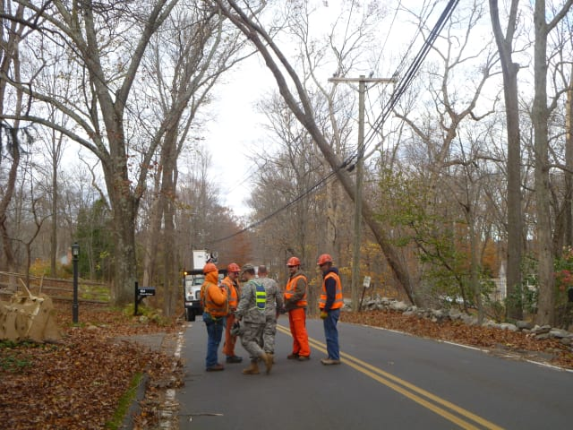 Connecticut National Guard members gather on Steep Hill Road in front of a tree they plan to cut down.