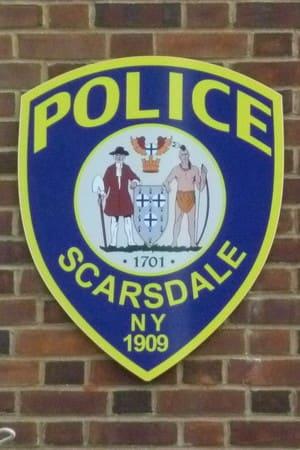 Scarsdale police were busy in the week following Hurricane Sandy.