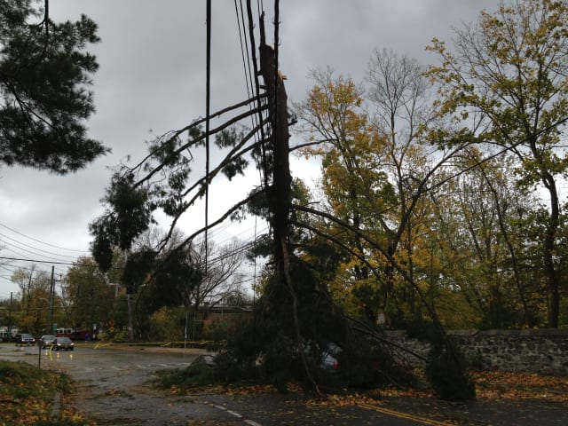 This tree toppled wires on Post Road in Scarsdale not far from the high school.