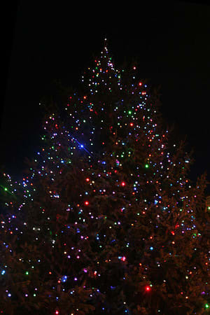 The Bedford Daily Voice has compiled a list of what's open and what's closed on Christmas Eve and Christmas Day.