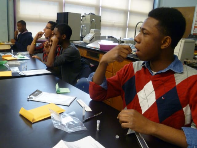 "Brandon Thomas takes a DNA sample Wednesday at Lincoln High School in Yonkers as part of the course, ""Faces of Diversity: Building the 'I Am' and the 'I Am from."""