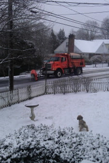 Greenwich Daily Voice reader Molly Spaeth submitted this picture of her dog barking at a plowing truck in Byram.