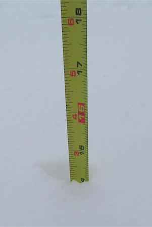 This tape measurer shows that some parts of Elmsford received 14 inches of snow Friday. No road closures or power outages were reported in Greenburgh.