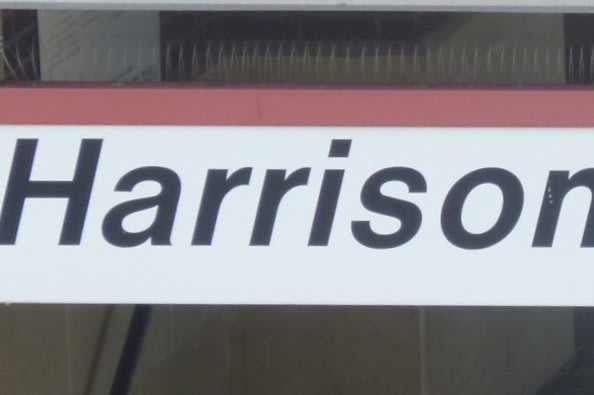 What to do in Harrison this week.