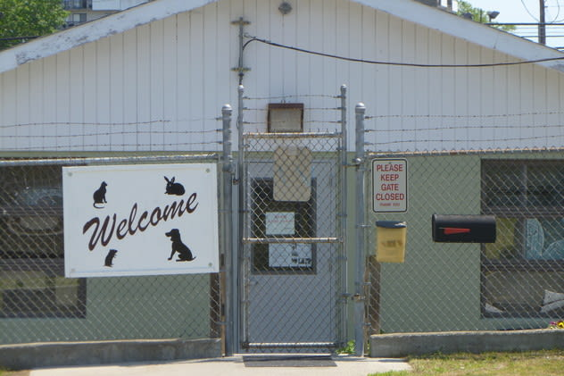 Stamford's Animal Shelter is looking to move into a facility that will better fit its needs, which the current one on Magee Avenue does not.
