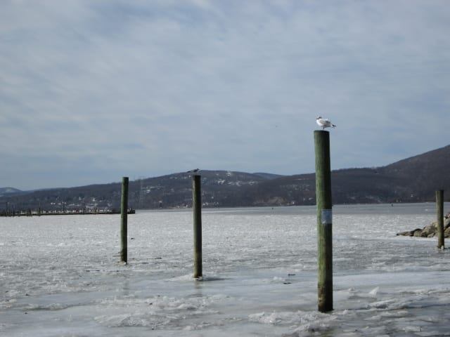 There is plenty going on this week in Peekskill.