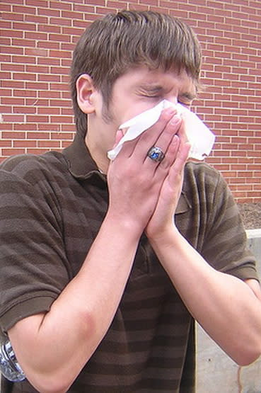 """The greater Bridgeport area and Fairfield County are one of the """"allergy capitals"""" of the U.S., according to a new study."""