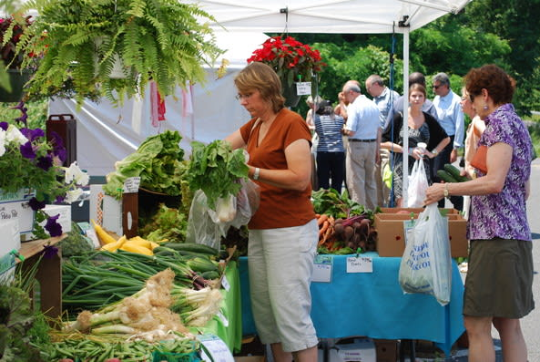 Phelps Hospital officials say the professional market manager assisting them with the Sleepy Hollow Farmers Market at Phelps, has backed out of the upcoming season.