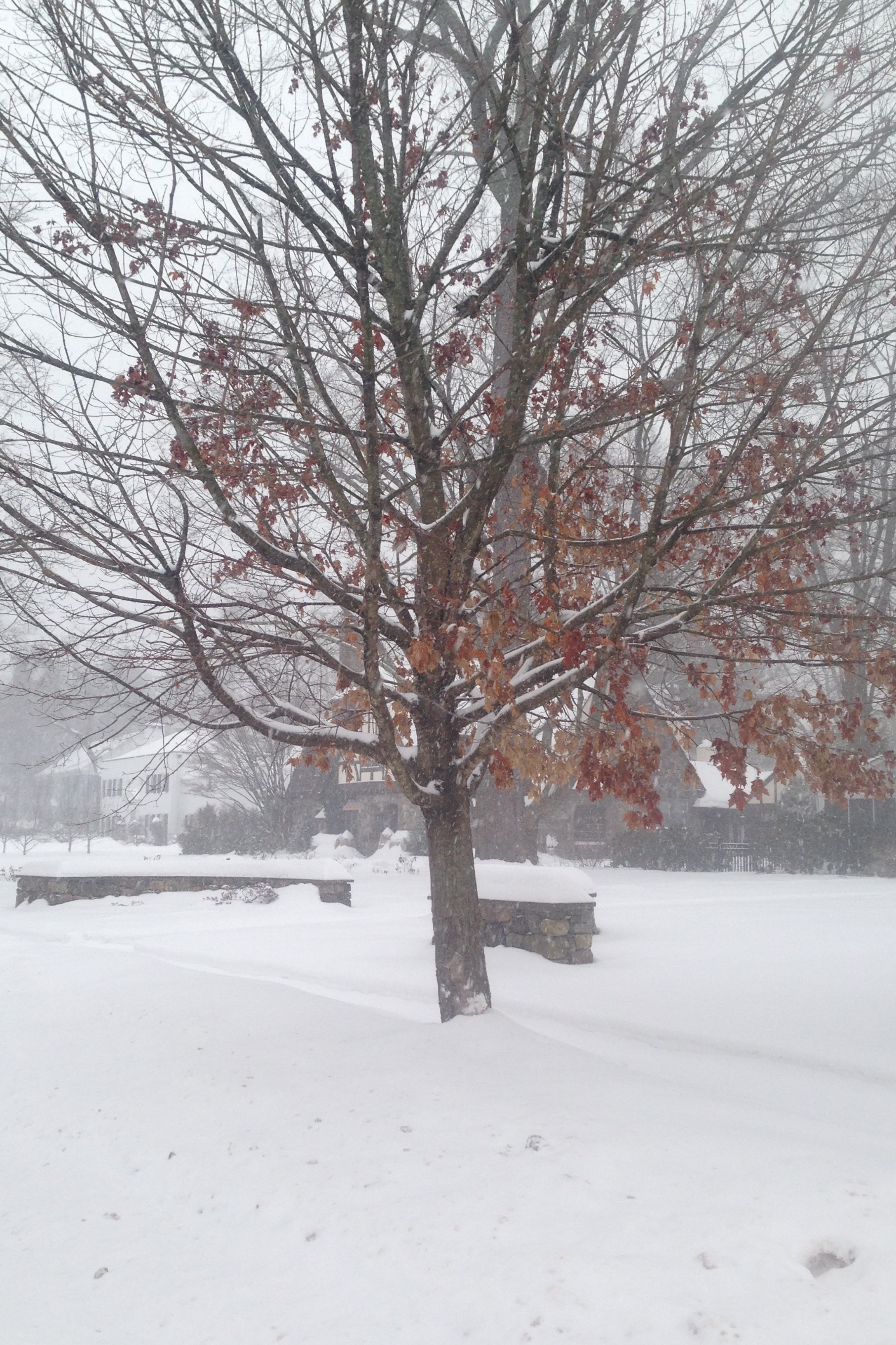 The snow doesn't show signs of stopping in northern Fairfield County.