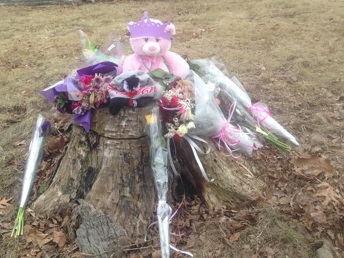 Items have been placed on a tree stump along Ridgebury Road in Ridgefield in memory of Emma Sandhu, who was killed Friday while walking along the road near her home.