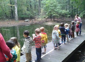 Rye Nature Center will be hosting an event for children to explore its ecosystem and to take their chance at catching eels in the blinding brook.