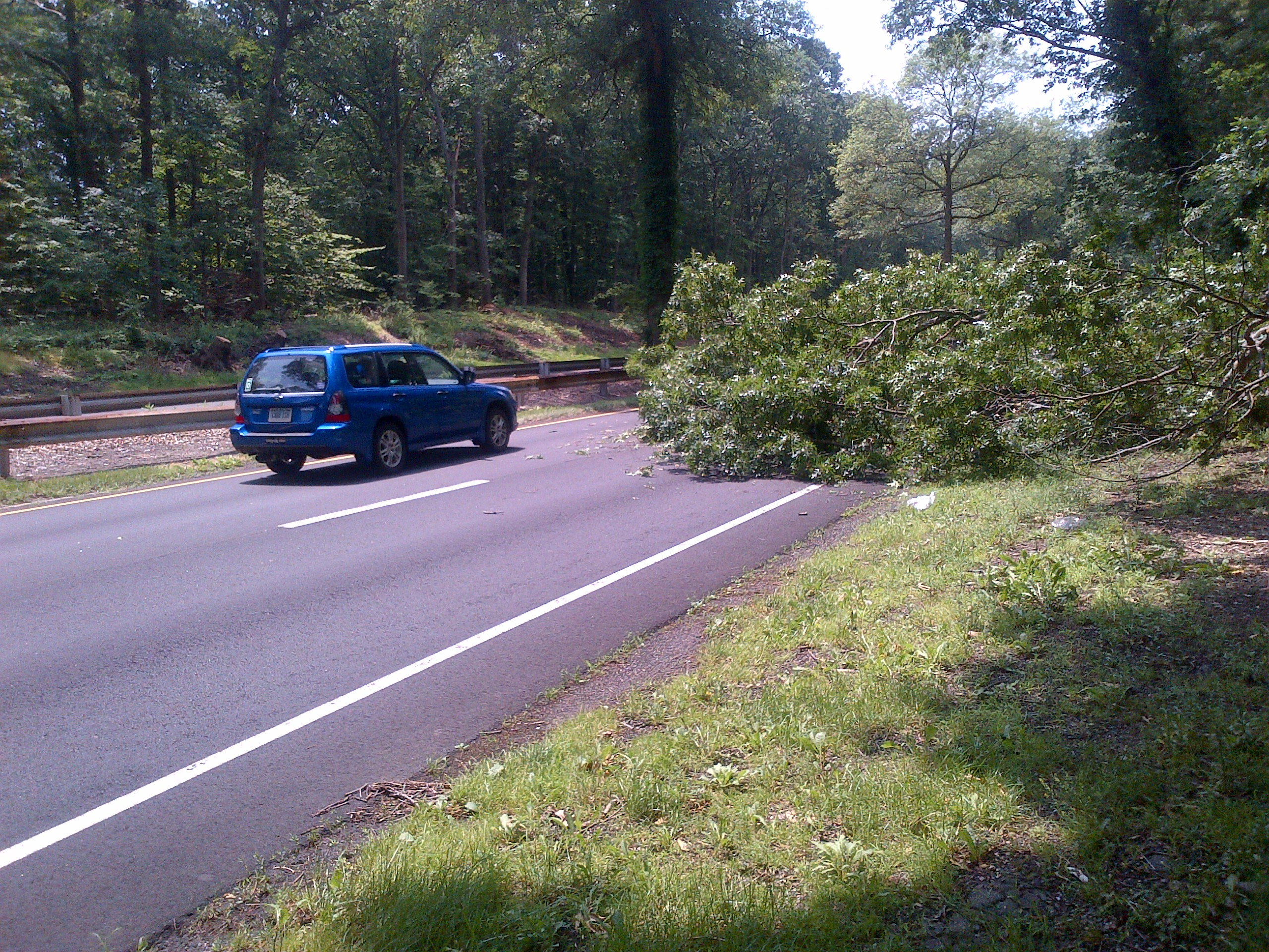 A fallen tree blocks a lane of the Merritt Parkway in Norwalk.