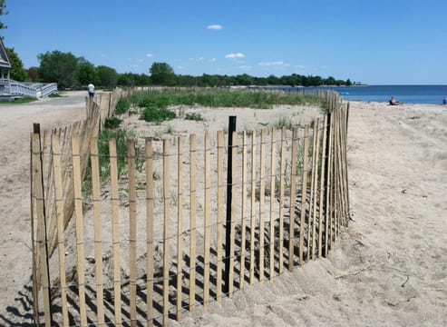 A new fence surrounds a sane dune at Sherwood Island State Park in Westport. Parkgoers will be admitted for free this weekend at Sherwood Island and at all state parks in Connecticut.